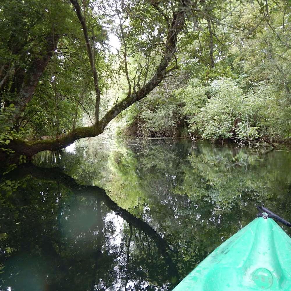 Randonnées canoë kayak Ruffec Rejallant Charente
